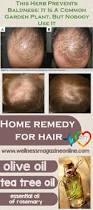 women hair loss before and after provillus natural hair regrowth