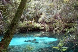 Bathtub Refinishing Florida Refinishing Ocala Fl