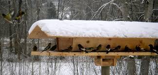 decorative feeders for winter birds bombay outdoors