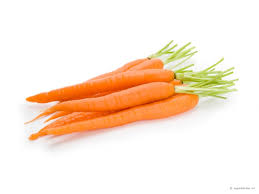 membuat mie dari wortel mie organik wortel rumah organik yasurazone