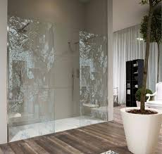 creative shower doors shower door ideas for bathroom creative