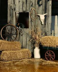 theme decor ideas best 25 western theme ideas on cowboy party cowboy