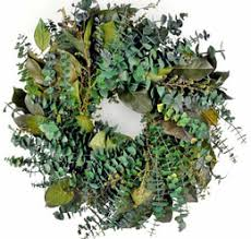 eucalyptus wreaths arches branches dried preserved