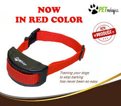 amazon com petnologics anti bark collar for small dogs and large