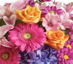 flower delivery wichita ks flowers for 12 months from your local wichita flower shop wichita