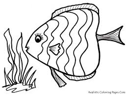fish coloring pages print 26 best coloring sheets images on pinterest coloring sheets