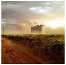 az bureau 67 best morrison ranch gilbert az images on ranch