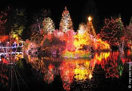 Vandusen Botanical Garden Lights Festival Of Lights At Vandusen Botanical Garden Emerald Events