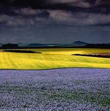 tutorial fotografi landscape charlie waite è uno dei fotografi paesaggisti più famosi del mondo