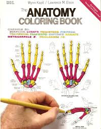 cheap anatomy coloring find anatomy coloring deals on line at