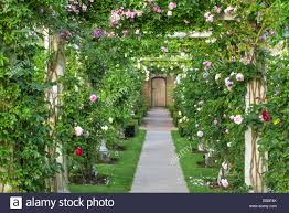 Pergola Ideas Uk by Rose Pergola David Austin Rose Garden Uk Stock Photo Royalty