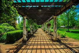 garden lattice walkway with stone pavers and vine flowers