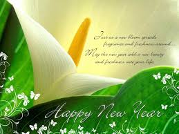 merry wishes messages and new year ne wall