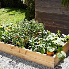 Cedar Raised Garden Bed Farmer D Cedar Rectangular Raised Bed Kit Williams Sonoma