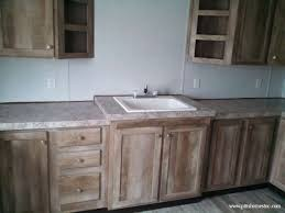 kitchen cabinet houzz bathroom vanities mold killer spray custom