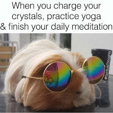 Spiritual Memes - meditation yoga monday spiritual funny meme memes