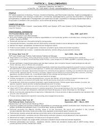Sample Investment Banking Resume by Credit Administration Sample Resume Haadyaooverbayresort Com