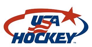 backyard ice rinks hockey rinks liners u0026 accessories nicerink