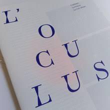 bureau brut extrabrut shop fonts in use