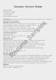 Resume Sample Quantity Surveyor by Optometrist Resume Free Resume Example And Writing Download