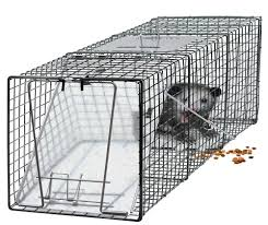 amazon com oxgord humane pest and rodent control live animal trap