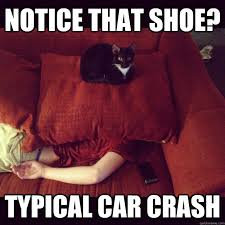 Car Wreck Meme - notice that shoe typical car crash jealous cat quickmeme