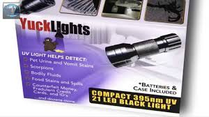 can a black light detect black light flashlight 21 led ultraviolet torch uv stain and cat