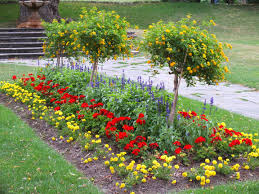 Garden Flowers Ideas Inspiration Of Flower Bed Ideas For Your Garden Design Top