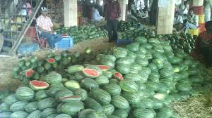 vashi market unique stories visiting apmc market vashi youtube