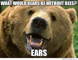 Morpheus Meme Generator - elegant morpheus meme generator your favorite memes now in bear form