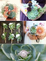 wedding flowers gift echeveria flowers weddings by lilly