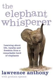 the elephant whisperer learning about life loyalty and freedom