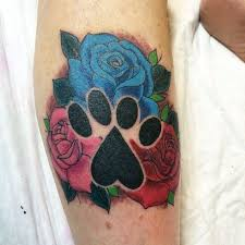 35 best lion paw tattoo drawings images on pinterest paw print