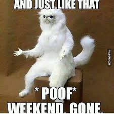 Funny Monday Memes - what happened there really 3 day weekend has gone soooooo