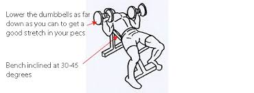 How To Do A Incline Bench Press The Best Upper Chest Exercise U2013 For Perfect Square Pecs Chest