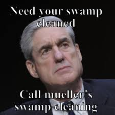 Cleaning Meme - need your sw cleaned call muellers sw cleaning meme meme