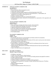 resume exles for experienced professionals placement coordinator resume sles velvet