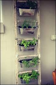 7 best indoor gardening images on pinterest balcony gardening