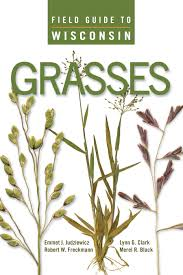 plants native to wisconsin uw press field guide to wisconsin grasses