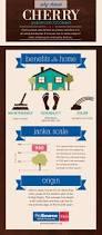 Laminate Flooring Benefits 196 Best Flooring Images On Pinterest Wide Plank Hardwood