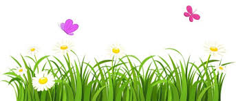 Clip Art Flowers Border - grass with flowers border clipart clipartxtras