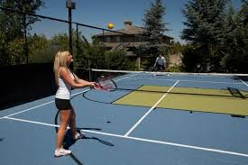 Backyard Sports Court by Backyard Court And Outdoor Sport Recreation Area Traditional