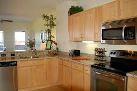 Kitchen Natural Maple Cabinets Granite Eiforces - Natural maple kitchen cabinets