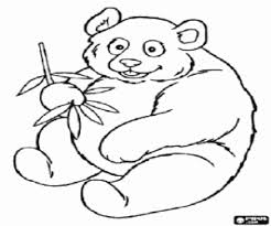 panda coloring pages asian animals coloring pages giant panda