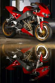 buell motorcycles rides pinterest buell motorcycles dream