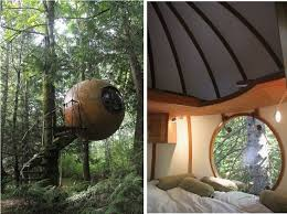236 best tree houses extraordinary images on