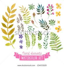 Wedding Flowers Drawing Royalty Free Vector Floral Set Colorful Floral U2026 233051038 Stock
