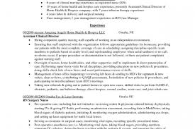 Sample Resume Usa by Resume Design Cover Letter To Irs Audit Response Auditor Cover