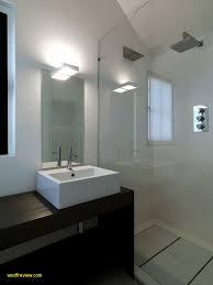 bathroom ideas nz bathroom awesome ideas nz wodfreview
