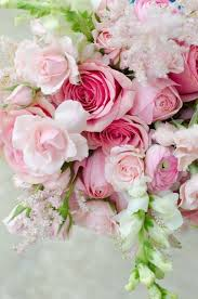 White Flowers Pictures - best 25 pink and white flowers ideas on pinterest blush wedding